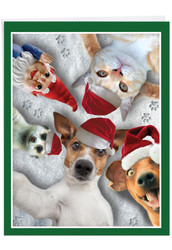 Animal Selfies, Jumbo Christmas Note Card - J2373GXSG