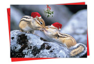 6594DXS - Holiday Animal Smackers: Paper Card