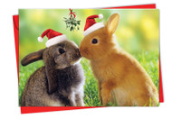 6594EXS - Holiday Animal Smackers: Printed Card
