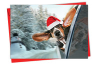6481EXS - Holiday Doggie In The Window: Paper Card
