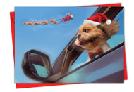 6481HXS - Holiday Doggie In The Window: Greeting Card