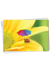 C1546ABD - Lady B.: Greeting Card