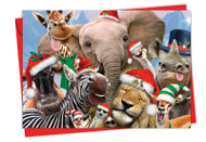 6652CXS - Merry Christmas To Zoo: Note Card