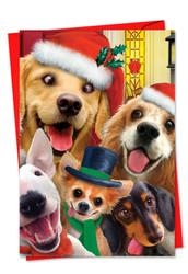 Merry Christmas To Zoo, Printed Christmas Greeting Card - C6652GXS