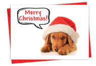 6690GXS - Santa Pups: Greeting Card
