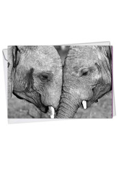 Trunks Of Love, Printed Anniversary Note Card - C2370BANG