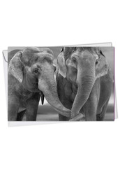 C2370HOC - Trunks Of Love: Printed Card