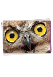 What A Hoot, Printed Blank Note Card - C1769COCB