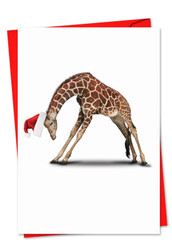 6547BXS - Yuletide Zoo Yoga: Note Card