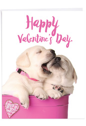 J3472VD - Pups In Love: Large Note Card