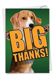 C2369DTY - Dog Big Thanks: Printed Card
