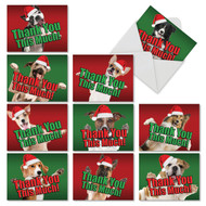 M2369XT - Dog Big Thanks: Assorted Set of 10 Cards