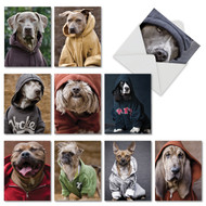Dogs In Da Hood, Assorted Set Of Mini Blank Greeting Cards - AM3733OCB
