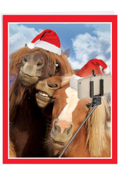 Animal Selfies, Extra Large Christmas Note Card - J2373BXSG