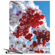 J3274JXS - Merry Berries: Giant Note Card