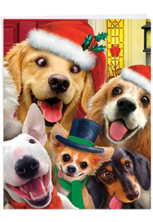 Merry Christmas To Zoo - Dogs, Extra Large Christmas Greeting Card - J6652GXSG