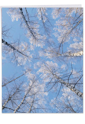 J9632AXS - Snow Tops: Over-sized Greeting Card