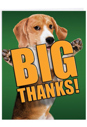 J2369DTY - Dog Big Thanks: Over-sized Paper Card