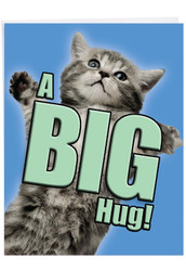 Cat A Big Hug, Jumbo Get Well Note Card - J6614AGWG