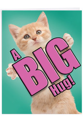 J6614GMY - Cat A Big Hug: Over-sized Greeting Card