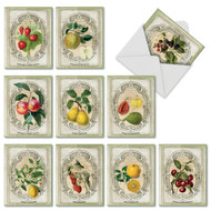 M4190TY - French Fruit: Mixed Set of 10 Cards