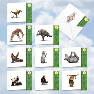 MQ6547OC - Zoo Yoga: Square-Top Mixed Set of 10 Cards