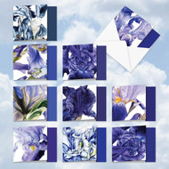 MQ4949TY - Iridescent Iris: Square-Top Mixed Set of 10 Cards