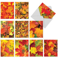 M3009 - Leaf A Message: Mixed Set of 10 Cards