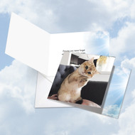 Paws And Prayers - Forget, Printed Square-Top All Occasions Greeting Card - CQ4955DOCG