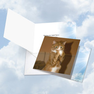 CQ4955COC - Paws And Prayers - Sneeze: Square-Top Greeting Card