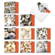 Pale Pumpkins, Assorted Set Of Mini Square-Top Halloween Greeting Cards - AMQ4192HWG