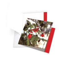 JQ5030DXT - Christmas For The Birds: Square-Top Giant Printed Card