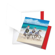 JQ5074BXS - Gallops And Greetings: Square-Top Over-sized Paper Card