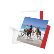 JQ5074CXT - Gallops And Greetings: Square-Top Jumbo Note Card