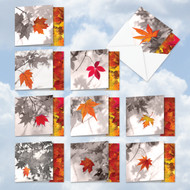 MQ4629OC - Autumn Leaf: Square-Top Mixed Set of 10 Cards