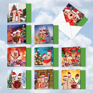 MQ4983XT - Christmas Fingers: Square-Top Mixed Set of 10 Cards