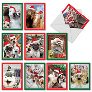 M2373XT - Holiday Animal Selfie: Mixed Set of 10 Cards