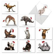 M6547XT - Yuletide Zoo Yoga: Assorted Set of 10 Cards