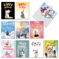 Cat-Sent Greetings, Assorted Set Of Mini Blank Note Cards - AM6112BDB