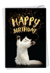 C6112ABP - Cat-Sent Greetings: Paper Card