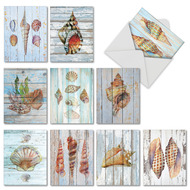 Seashell Driftwood, Assorted Set Of Mini Blank Note Cards - AM6118OCB