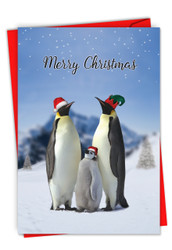 C2951AXS - Penguins and Greetings Christmas: Paper Card