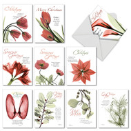 AM6219XT - Blooming Christmas Spirit: Mini Mixed Set of 10 Cards
