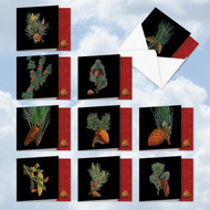 AMQ6126HH - Black Pine: Mini Square-Top Mixed Set of 10 Cards