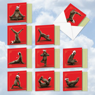 AMQ6255XS - Sloth Yoga: Mini Square-Top Mixed Set of 10 Cards