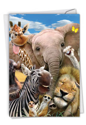 C6639FBD - Here's Looking At Zoo: Printed Card
