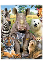 Here's Looking At Zoo, Extra Large Get Well Note Card - J6639AGWG-US