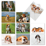 AM6296OC - Bouncing Beagles: Mini Assorted Set of 10 Cards