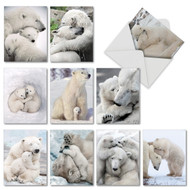 AM6327OC - Bear Hugs: Mini Assorted Set of 10 Cards
