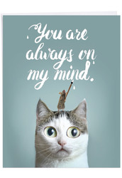 J6112GMY - Cat-Sent Greetings: Big Greeting Card